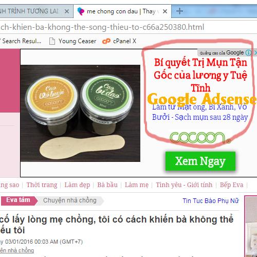 ví dụ hình ảnh website làm Google Adsense